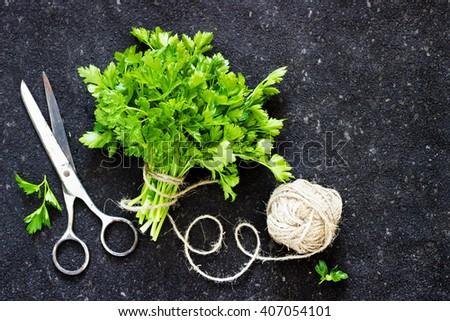 Green parsley on dark  background linen thread tangle - stock photo
