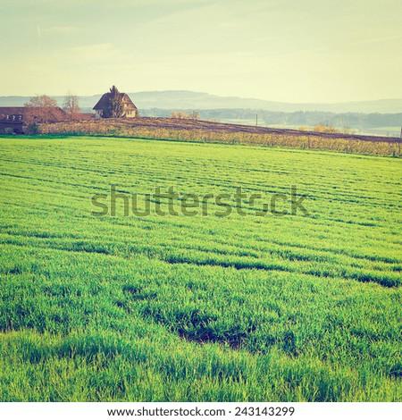 Green Pastures around Farmhouse in Switzerland, Instagram Effect - stock photo