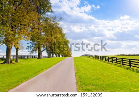 Green pastures of horse farms at early autumn. - stock photo