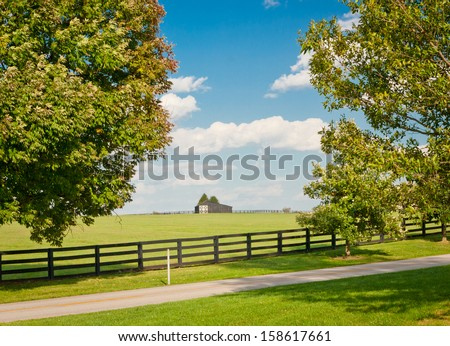 Green pastures of horse farms. Country landscape. - stock photo