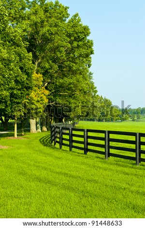 Green pastures of  horse farms. Summer country landscape. - stock photo