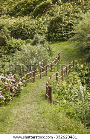 Green pathway surrounded by lush vegetation in Flores, Azores island. Portugal - stock photo