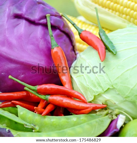 Green pea,sweet corn, green cabbage, purple cabbage, lime and red chili products from mixed organic farm in closed-up on natural green background.