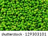 Green peas background image. - stock photo