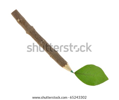 Green pencil and leaf isolated on white background - stock photo