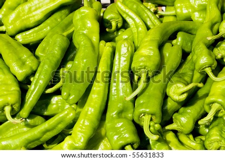 Green pepper background