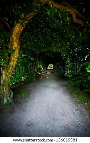 Green pergola under old trees - stock photo