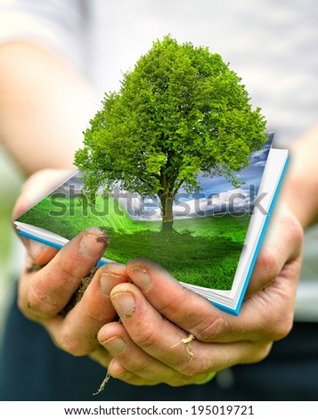 Green planet in your heart hands - environment concept - stock photo