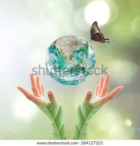 Green planet with butterfly over human hands in blurred green color bokeh background of natural tree leaves facing sun flare : World environment day concept: Elements of this image furnished by NASA - stock photo