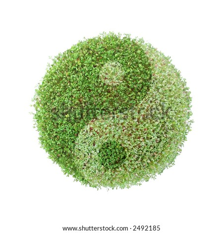 Green plant globe with superimposed ying-yang symbol over white background - stock photo