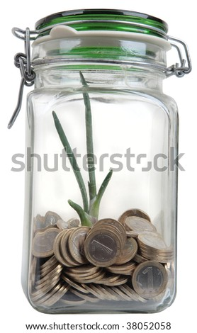 green plant growing in a glass jar full of coins - stock photo