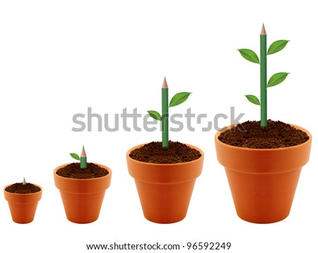 Green Plant growing in four levels in clay garding pot. - stock photo