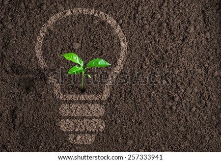 Green plant growing in light bulb silhouette on soil background - stock photo