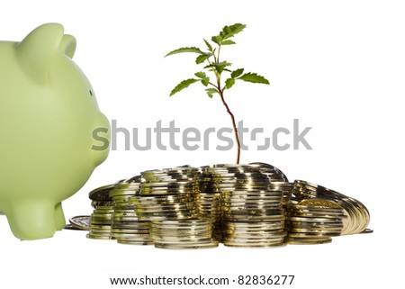 Green plant growing out of a pile of golden coins next to a green piggy bank on a white background.