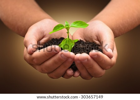 Green plant in a child hands on dark background - stock photo