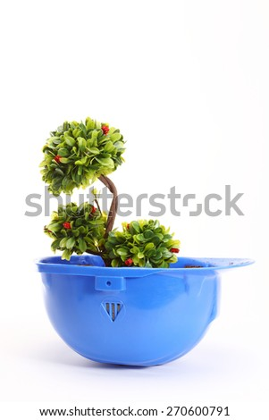 Green plant in blue helmet on white - environmental friendly industry concept - stock photo