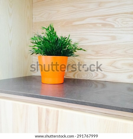Green plant in orange pot decorating contemporary wooden kitchen. - stock photo