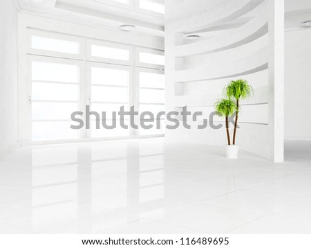 green plant in the empty room - stock photo