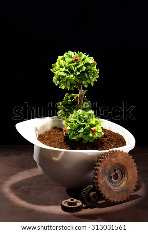 Green plant in white helmet and rusty gear on black - environmental friendly industry concept - stock photo
