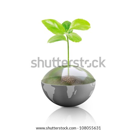 green plant on Earth isolated on white background