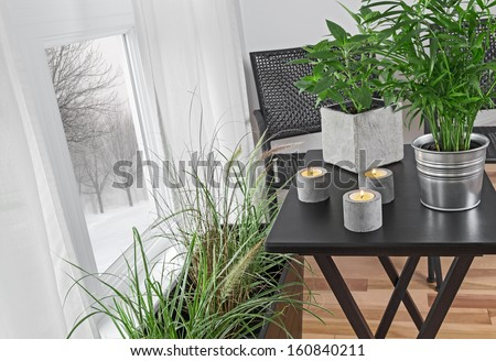 Green plants and candles decorating a room, with winter landscape behind the window. - stock photo