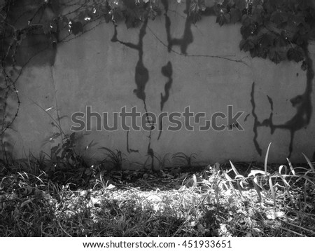 green plants and gray wall/plants and wall - stock photo