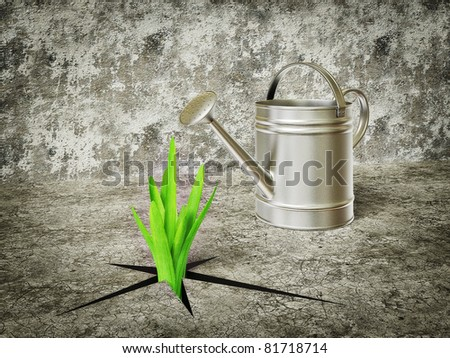 green plants grow out and watering can