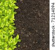 green plants growing on soil manure. - stock photo