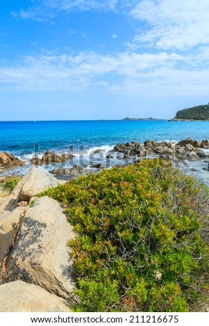 Green plants on rocks and view of beautiful azure sea water of Porto Giunco beach, Sardinia island, Italy