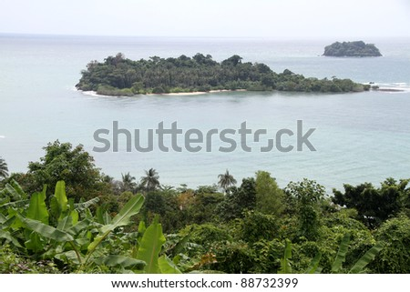 Green plants, trees and Ko Chang island, Thailand - stock photo
