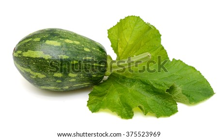 green pumpkin with leaf isolated on white background - stock photo