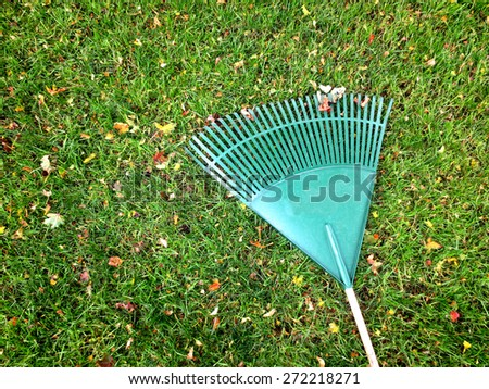 green rake on grass lawn with leaves - stock photo
