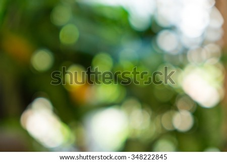 Green ray lights glitter defocused abstract background. - stock photo