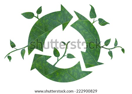 Green recycle.(Idea and create  from leaf)