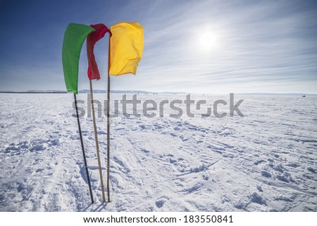 Green, Red, Yellow Flags on the background of winter sky - stock photo