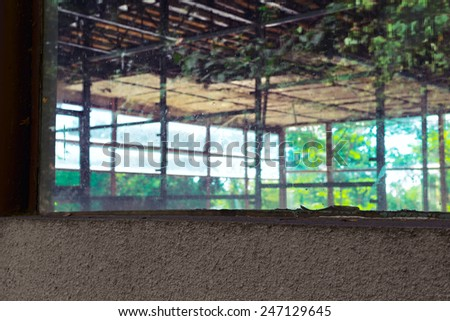 Green reflections in the windows of an abandoned building - stock photo