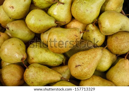 Green ripe pears / photography of pears  - stock photo