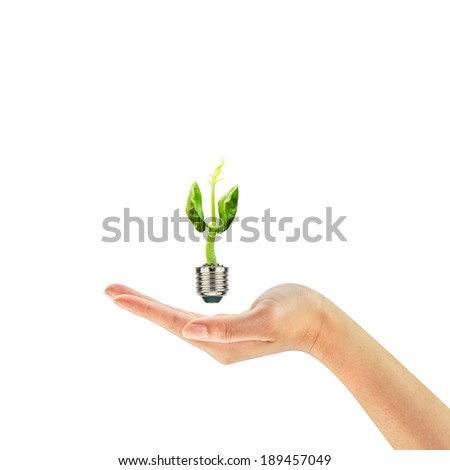 Green rising sprout growing out of a bulb on woman hand isolated on white background, Green energy concept, New life concept.