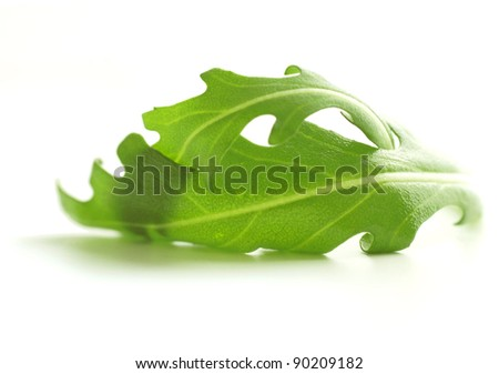 Green Rocket / Roquette / Arugula / Rucola salad leaves isolated on white background - stock photo