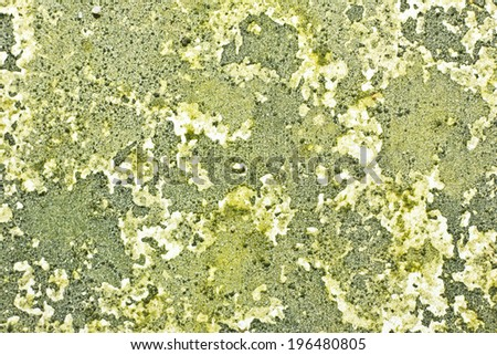 Green rotten dirty wall texture. - stock photo