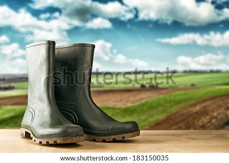 Green rubber boots. Agricultural working boots for all sorts of garden work. - stock photo