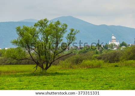 green rural field on a misty mountain background - stock photo