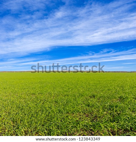 green rural fields - stock photo