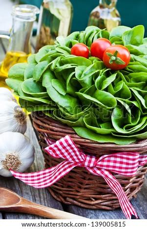 Green salad - garden - stock photo