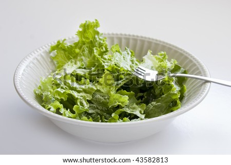 Green salad in a white bowl - stock photo