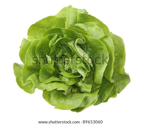 green salad isolated on white - stock photo