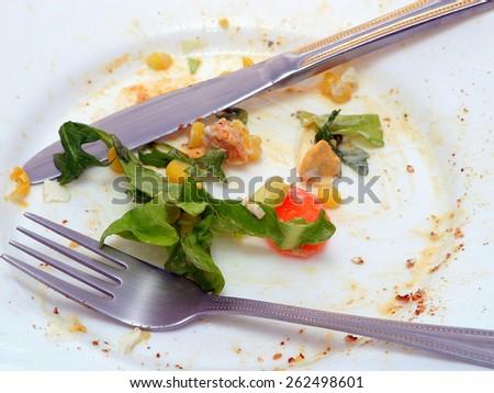 Green salad plate - stock photo