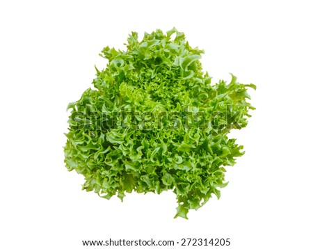 Green salad vegetable isolated on white background