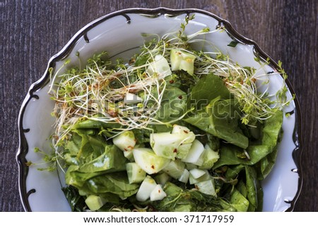 Green salad with sprouts and cucumbers - stock photo