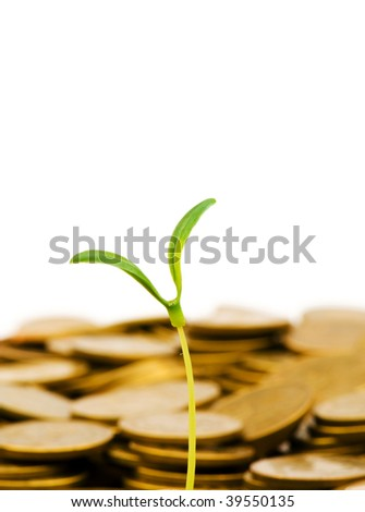 Green seedling growing from the pile of coins - stock photo